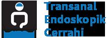 Transanal Endoskopik Cerrahi Logo